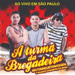 Capa: A Turma da Bregadeira - Ao Vivo em São Paulo