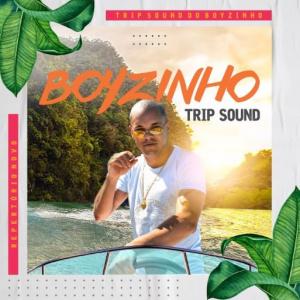 Boyzinho o Rei da Bregadeira - Trip Sound