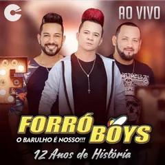 Forró Boys - 12 Anos de História