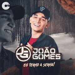Jo�o Gomes - Eu Tenho a Senha