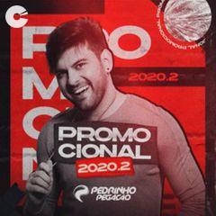 Capa: Pedrinho Pegação - Promocional 2020.2