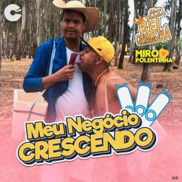 Rei da Cacimbinha - Meu Negocio Crescendo Feat. Miro Polentinha