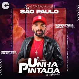 Capa: Unha Pintada - Ao Vivo em São Paulo